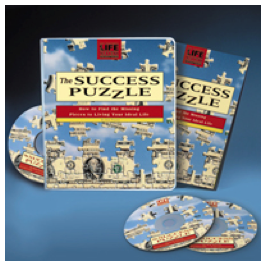 The Success Puzzle